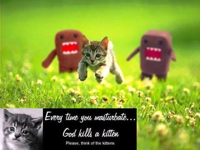 every-time-you-masterbate-kitten